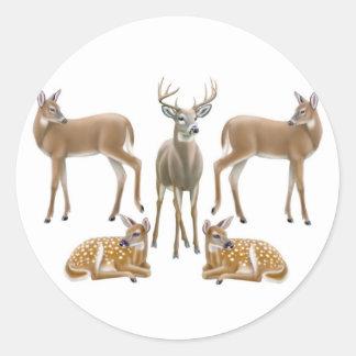 Whitetail Deer Sticker