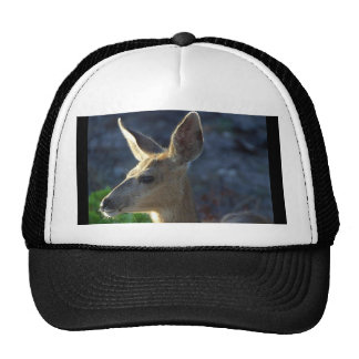 WhiteTail Deer Trucker Hat
