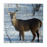 "Whitetail Deer (Winter) Decorative Ceramic Tile<br><div class=""desc"">Magnificent whitetail buck stands in snow,  showing off winter antlers. Neat item for those who admire the outdoors! Can be used in the lid of a wood gift box or as a trivet in the kitchen,  to hold hot items.</div>"
