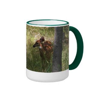 Whitetail Fawn Coffee Mugs
