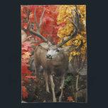 "Whitetail In Autumn Kitchen Towel<br><div class=""desc"">Whitetail In Autumn</div>"