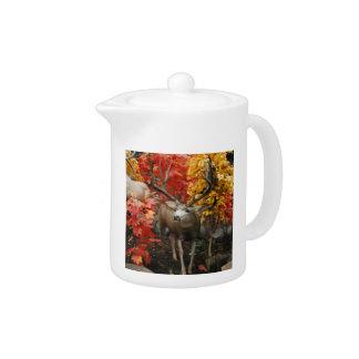 Whitetail In Autumn Teapot