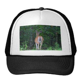 Whitetail Retreat Trucker Hat
