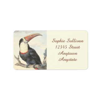 Whitethroated American Toucan Vintage Watercolor Label