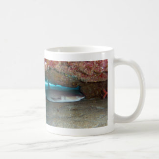 Whitetip Reef Shark 2 Coffee Mug