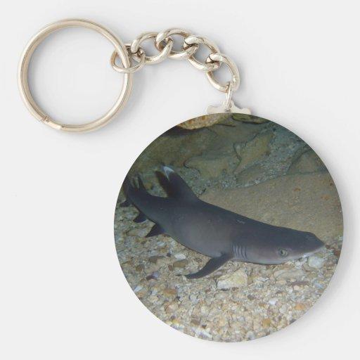 Whitetip Reef Shark Key Chain