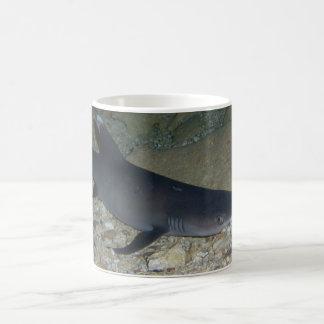 Whitetip Reef Shark Coffee Mug