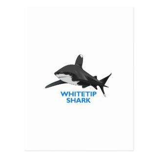 WHITETIP SHARK POSTCARD