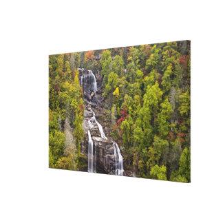 Whitewater dramático cae en otoño en impresión en tela