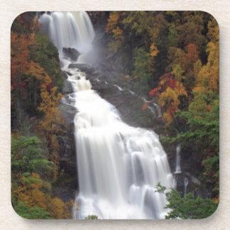 Whitewater Falls Beverage Coaster