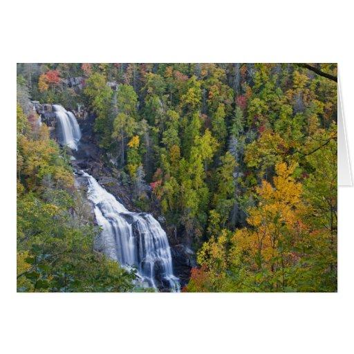 Whitewater Falls in the Nantahala National Card