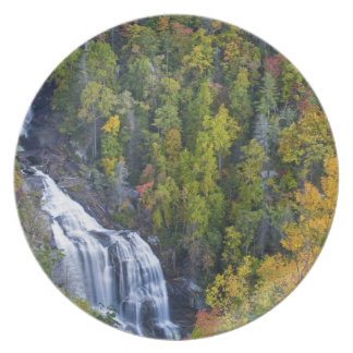 Whitewater Falls in the Nantahala National Party Plates