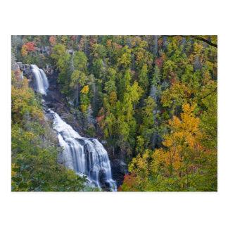 Whitewater Falls in the Nantahala National Postcard