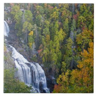 Whitewater Falls in the Nantahala National Tile
