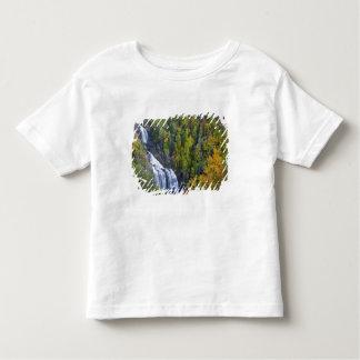 Whitewater Falls in the Nantahala National Toddler T-shirt