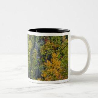 Whitewater Falls in the Nantahala National Two-Tone Coffee Mug