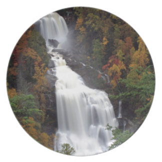 Whitewater Falls Party Plate