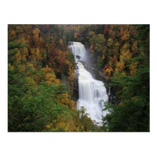 Whitewater Falls Postcard