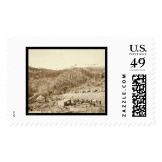 Whitewood Canyon & Wade & Jones RR SD 1890 Stamps