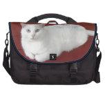 Whitey Laptop Commuter Bag