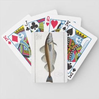 Whiting (Gadus Merlangus) plate LXV from 'Ichthyol Bicycle Playing Cards
