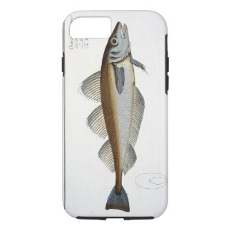 Whiting (Gadus Merlangus) plate LXV from 'Ichthyol iPhone 8/7 Case