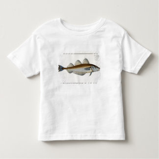 Whiting (Gadus Merlangus) plate LXV from 'Ichthyol Toddler T-shirt