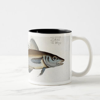 Whiting (Gadus Merlangus) plate LXV from 'Ichthyol Two-Tone Coffee Mug