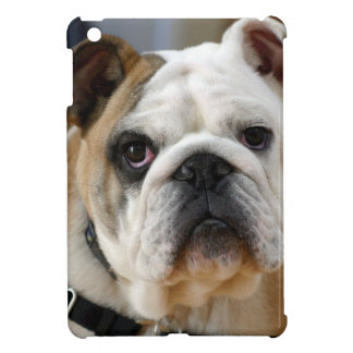 Whitish brown colored English Bull dog Posing iPad Mini Cases
