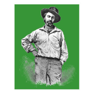 Whitman engraving - any color background postcard