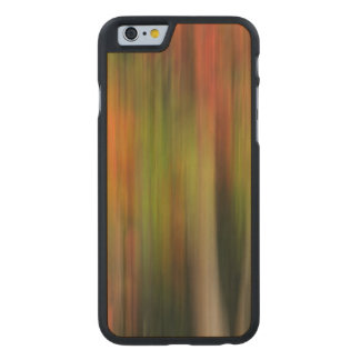 Whitman Mission National Historic Site, WA Carved Maple iPhone 6 Slim Case