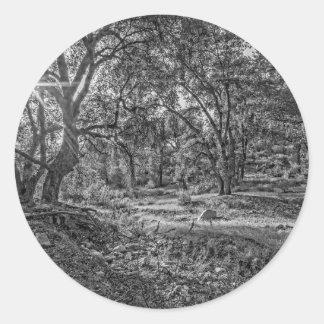 Whitney Valley Oaks Classic Round Sticker