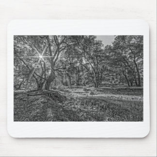 Whitney Valley Oaks Mouse Pad