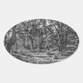 Whitney Valley Oaks Oval Sticker