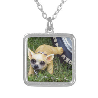 Whiz Kid Silver Plated Necklace