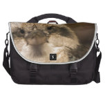 Who Are You Looking At? Commuter Bags