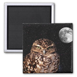 WHO ARE YOU LOOKING AT? (owl & moon design) ~ 2 Inch Square Magnet