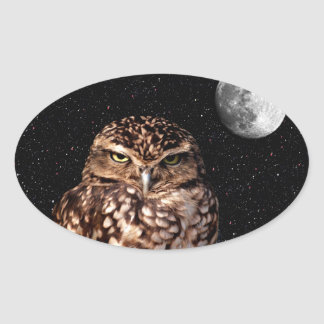 WHO ARE YOU LOOKING AT? (owl & moon design) ~ Oval Sticker