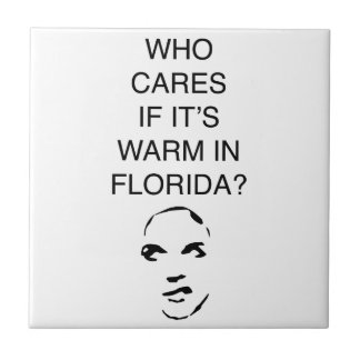 Who cares if it's warm in Florida fun collection Tile