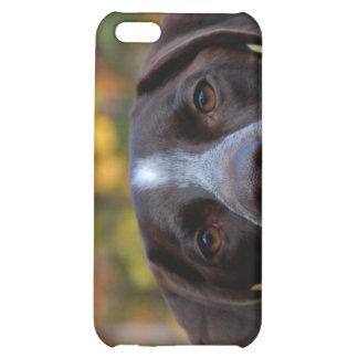 Who Dat Dog? Case For iPhone 5C