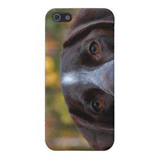 Who Dat Dog? iPhone SE/5/5s Cover
