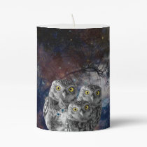 Who is that Cat and Owls Pillar Candle