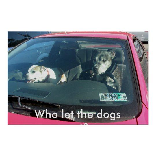 Who let the dogs out? Poster