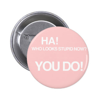 Who looks stupid now? button
