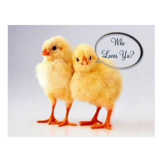 Who Loves Ya? Customizable  Postcard