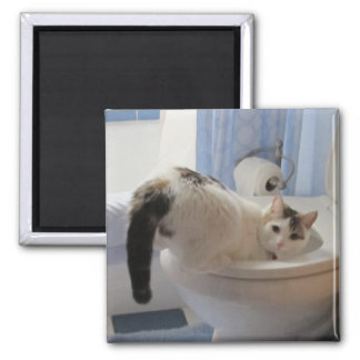 Who? Me? 2 Inch Square Magnet