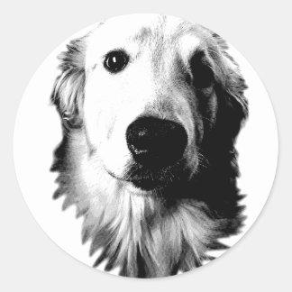 Who Me? Funny Dog Expressions. Golden Retriever Round Sticker