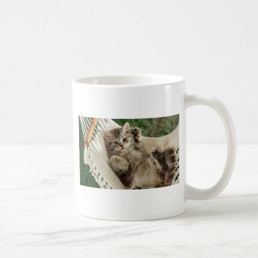 Who Me? Hammock Kitten Mugs
