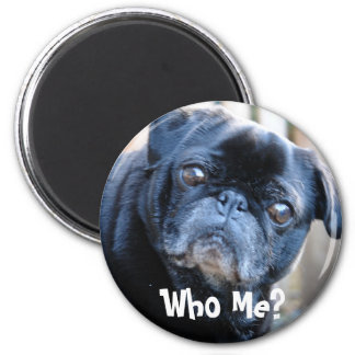 Who Me? Magnet