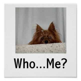 Who...Me? Poster